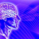Мозг воспринимает ограниченное количество информации