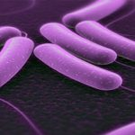 Новые подходы к лечению пациентов, страдающих частыми бактериальными инфекциями