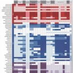 Таблица чувствительности бактерий к антибиотикам