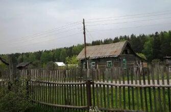 деревня Мотково вымирает от прививки
